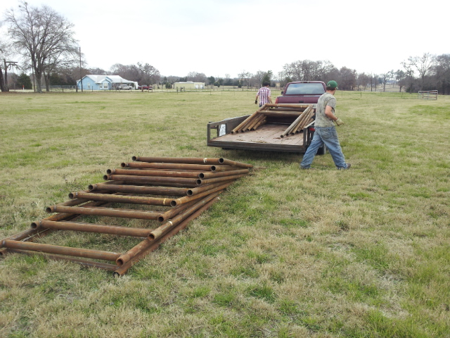 Unloading VSP Trellis for vine wire.  Average weight 300 lbs.  Hole for each nine inches each.  Will encompass an acre and a half.  Copyright 2015 John J. Rigo, Stewart-Rigo Winery in Eustace, Texas.